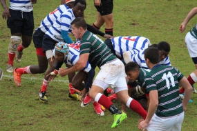 Rugby Results: Uplands vs Lowveld High School